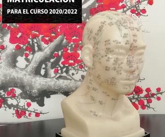Curso Profesional  Quiromasaje: Cursos y tratamientos de Centro Dao Málaga