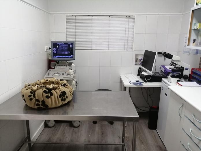 Medicina preventiva: Servicios veterinarios de Clínica Veterinaria Leganés Norte