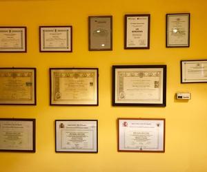 psicología y logopedia títulos