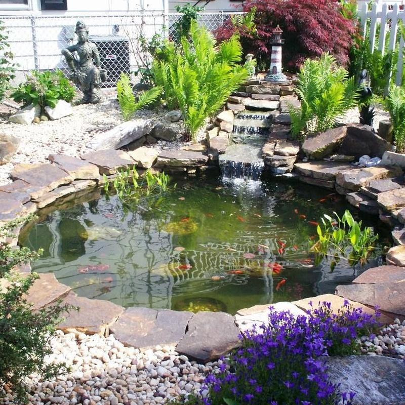 Estanques: Productos y servicios de Eiviss Garden