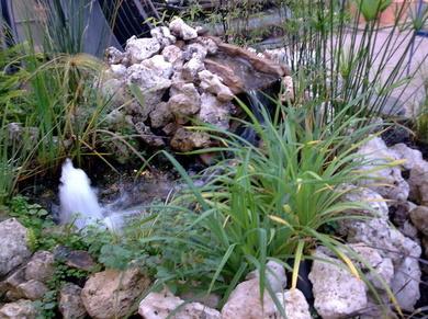 ¿Buscando ideas para decorar tu jardín?