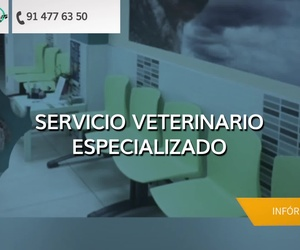 Hospital veterinario en Vallecas | Clínica Veterinaria DContreras