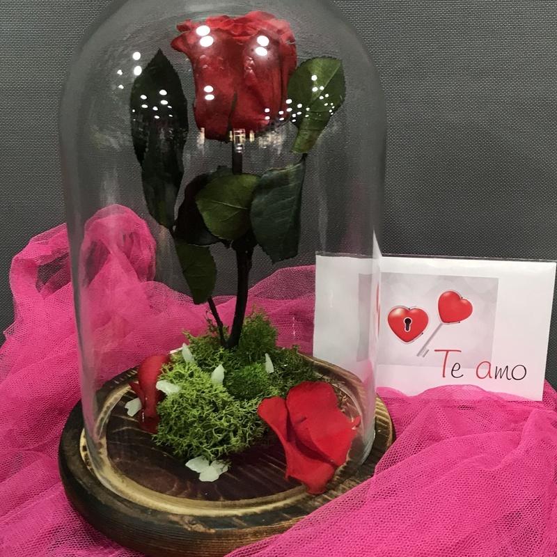 Rosas Eternas Bella y la Bestia: Productos de Flores Madrid