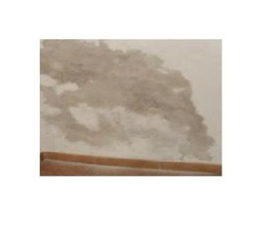 Soluciones para la humedad de paredes