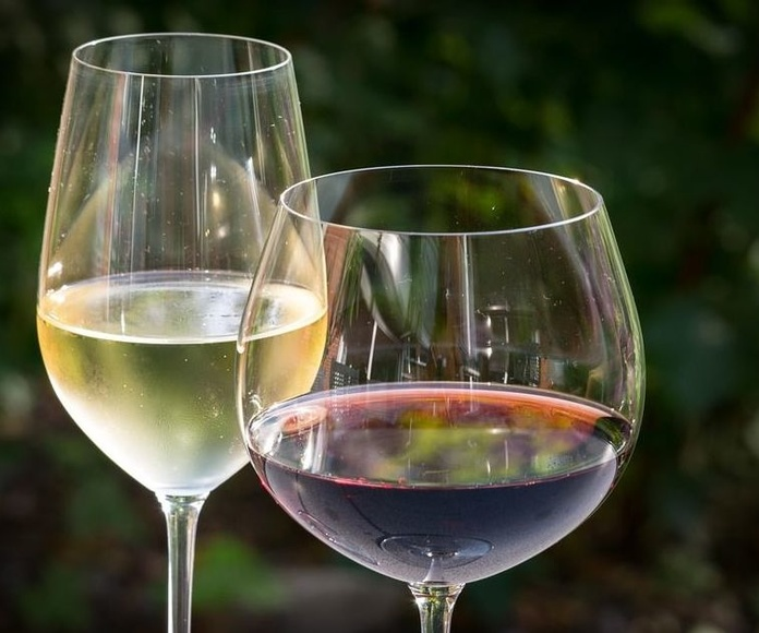 Nuestros vinos: Nuestros platos  de Il Romeo Trattoria Pizzería