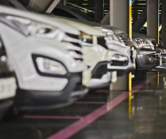 Parking por horas Cuatro Caminos Nuevos Ministerios: Servicios de Garaje Dávila