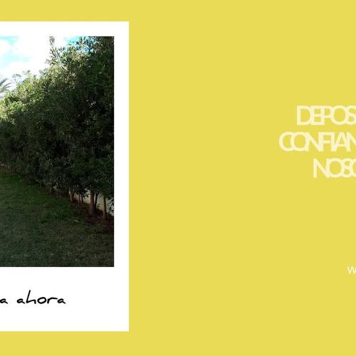Mantenimiento de comunidades en Torremolinos: Jardines JFK