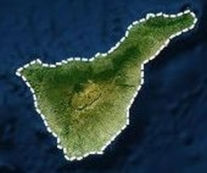Verificación de básculas en Tenerife