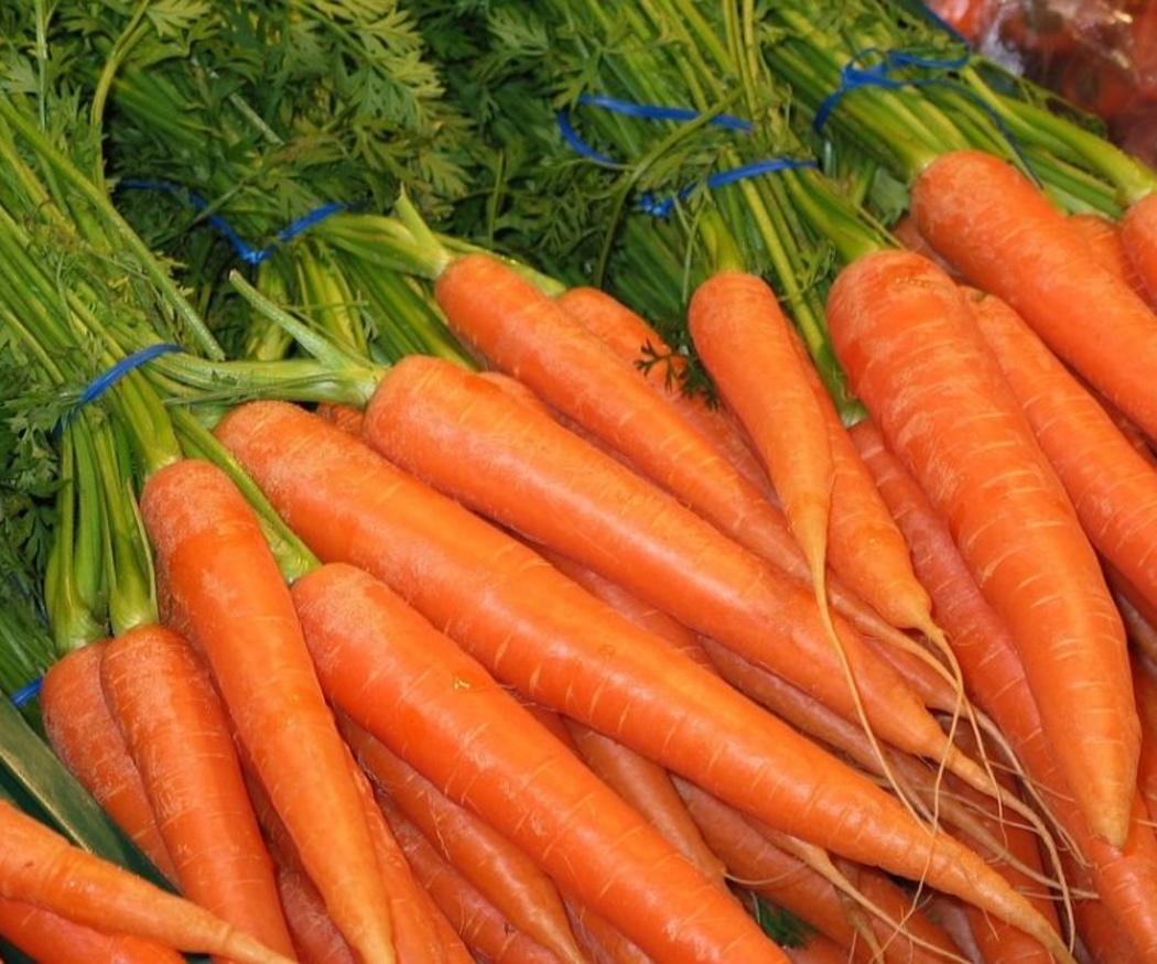 Razones para no perder de vista a las zanahorias