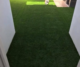Mantenimiento de jardines: Servicios de PauMar Jardines y Piscinas