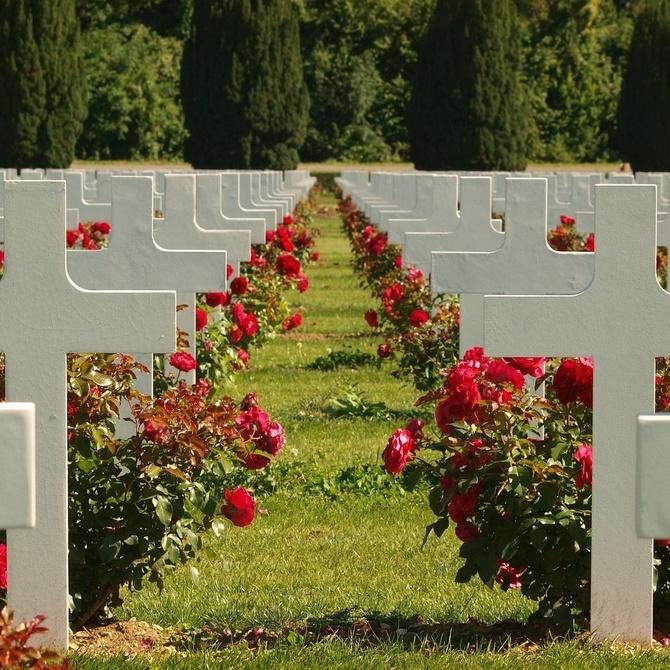 ¿Por qué llevamos flores a los muertos?