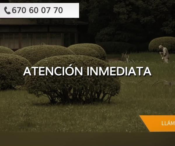 Mantenimiento de jardines y piscinas en Cambre | Aguateck