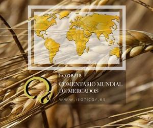 Informe internacional de mercados 14.08.18