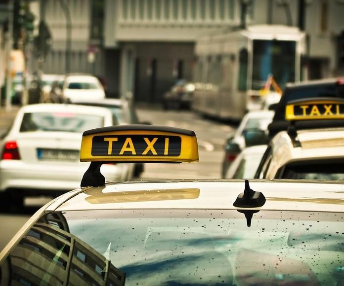 Empresas: Servicios de Taxi Jesús María Díaz Mendaza