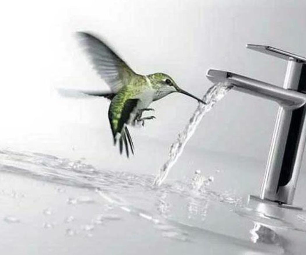 La importancia del momento del baño