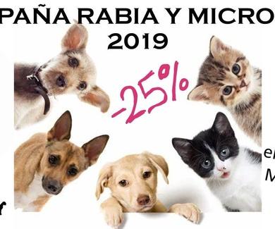 Campaña de Rabia y Microchip 2019 en Mostoles