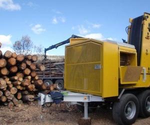Producción de leña y biomasa