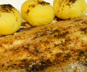 PESCADOS-FISH-FISCH-POISSON: Restaurante Sevillano