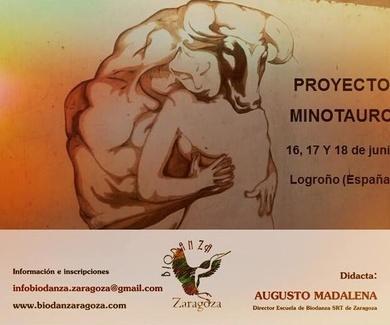 Proyecto Minotauro II