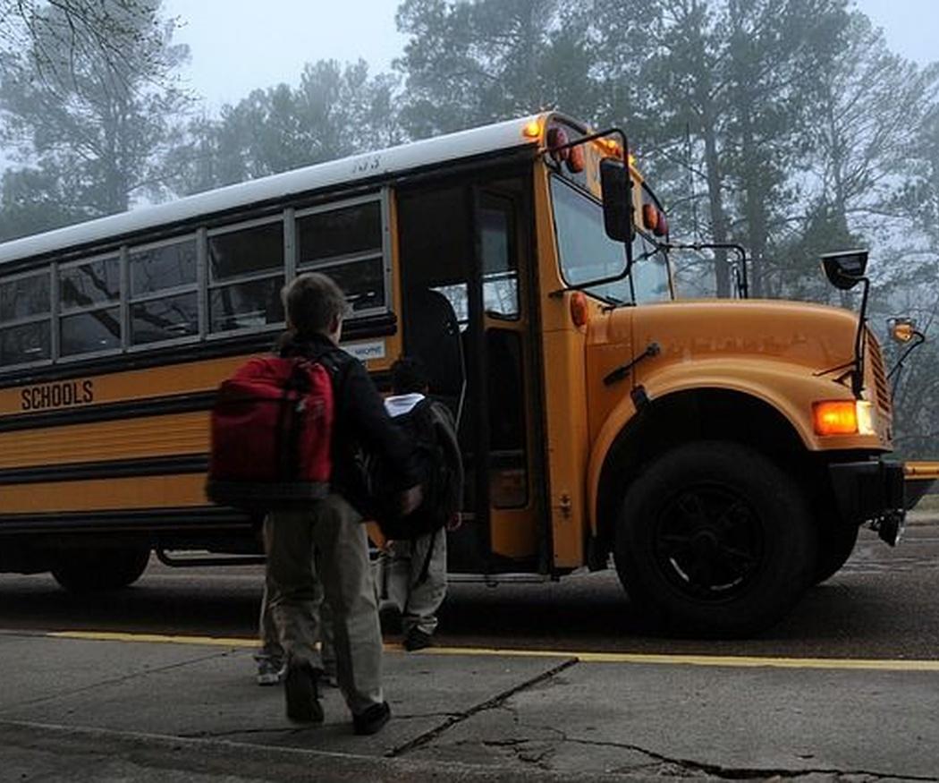 Seguridad vial infantil: uso seguro del transporte escolar