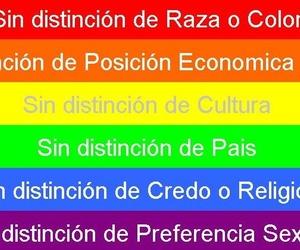Galería de Asociación sin ánimo de lucro especializada en la promoción de Igualdad de Oportunidades en Santa Cruz de Tenerife | Asociación Domitila
