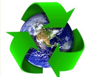 Perito judicial especializado en medio ambiente