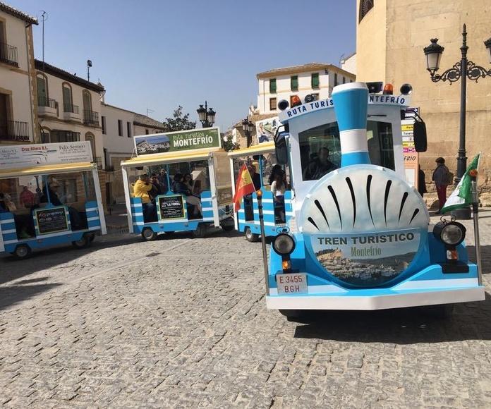 Excursiones guiadas Rutas Turistas Montefrio