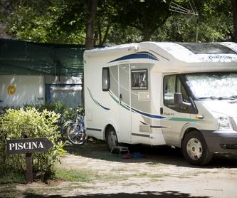 Precios: Servicios de Camping Don Quijote