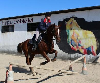 Competición Salto de Obstáculos