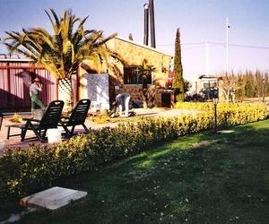 Mantenimiento de jardines en Valencia