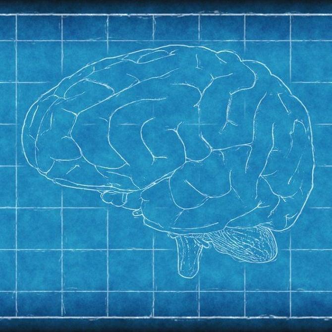 ¿Por qué es tan difícil diagnosticar algunas enfermedades del cerebro?
