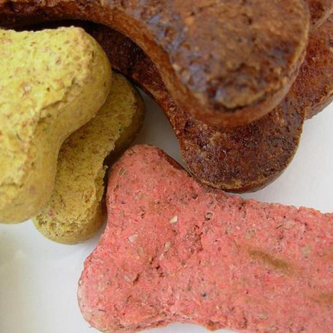 Consejos para darle snacks a tu perro