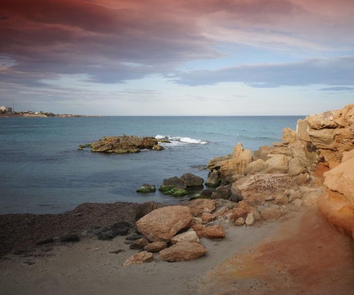 Sus playas: Servicios de Apartamentos Turísticos Shoal