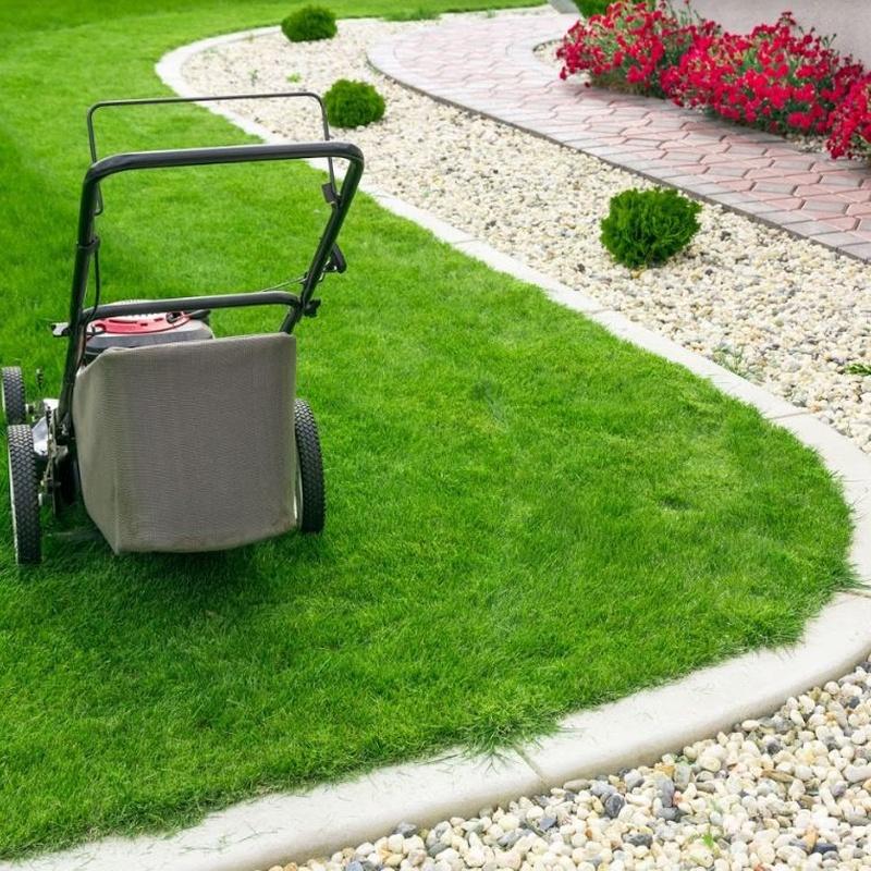 Limpieza y mantenimiento de Jardines: Servicios especializados of Limpiezas Ecolin Caselles