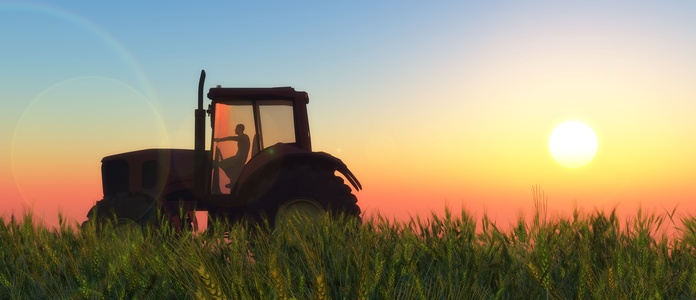 Vehículos agrícolas: Servicios de Reparación de lunas María de las Nieves