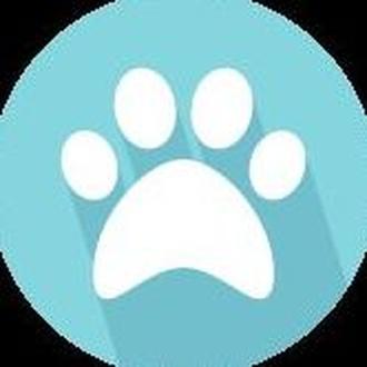 Tienda especializada con mascotas