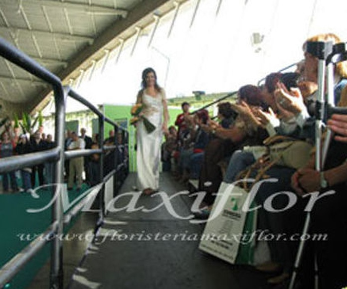 Ferias y pases: Catálogo  de Floristería Maxiflor