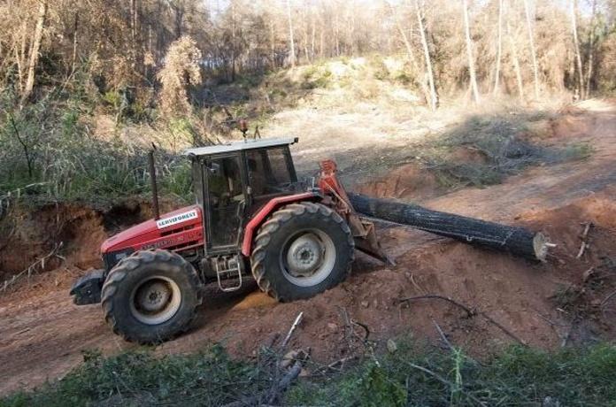 Explotación y limpieza forestal: Servicios de Leña Rubí