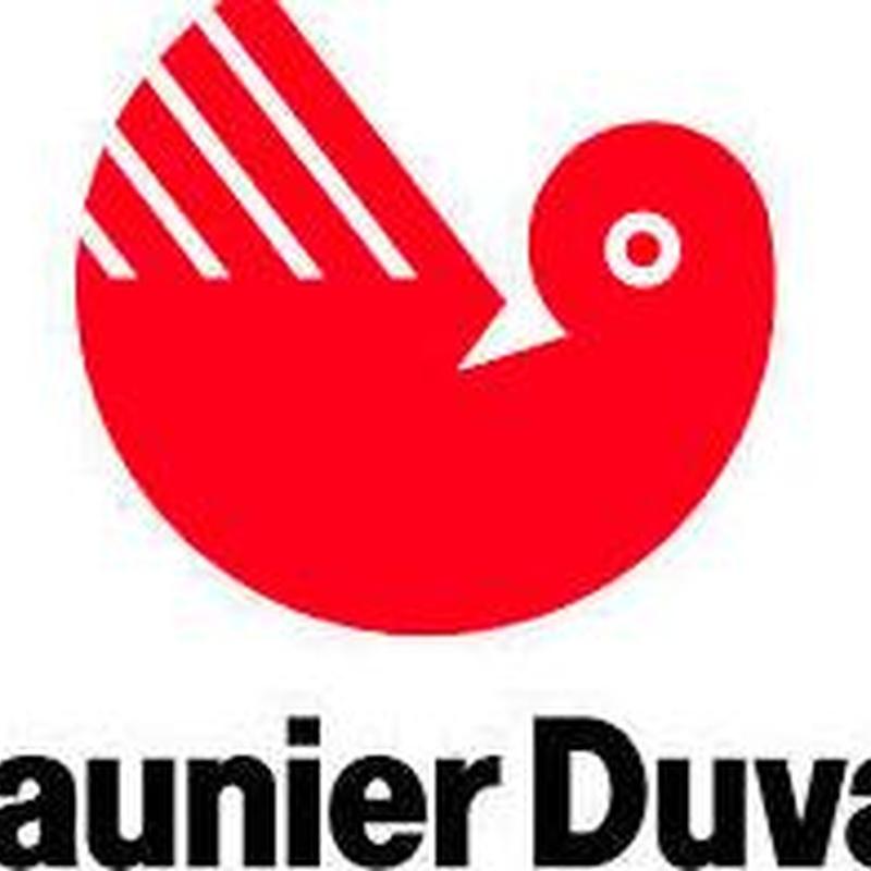 Saunier Duval Tema condens F25: Servicios de Jasfa Calefacción