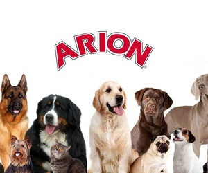 Distribuidor de piensos Arion en Burgos