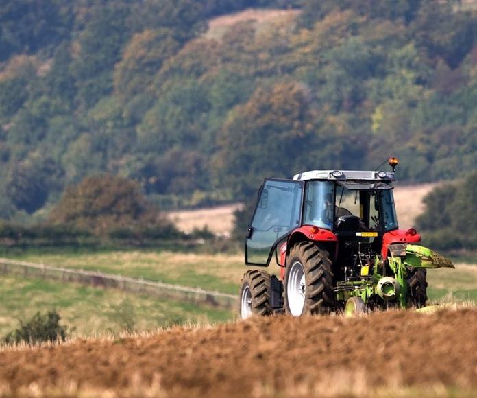 Especialistas en neumáticos agrícolas: Productos y Servicios de Neumáticos Pallas