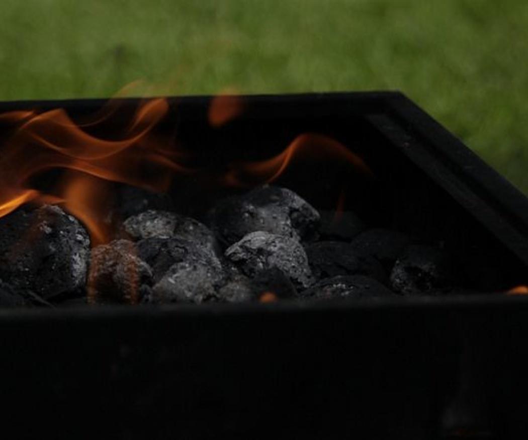 Propiedades y ventajas del carbón de encina