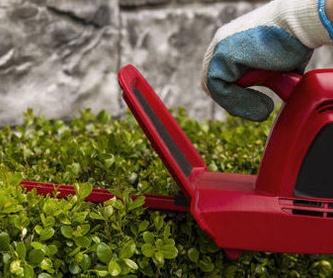 Amplia experiencia: Servicios de Voip Jardines