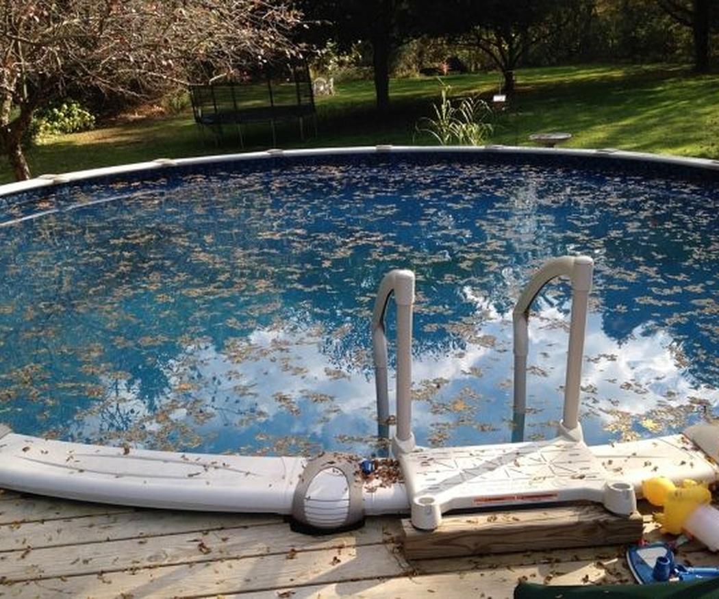 Cómo eliminar las algas de tu piscina