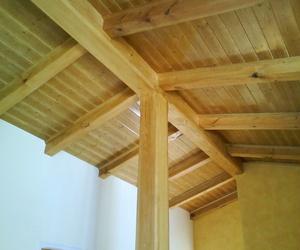 Forrado de techo con vjgas tirantes y friso