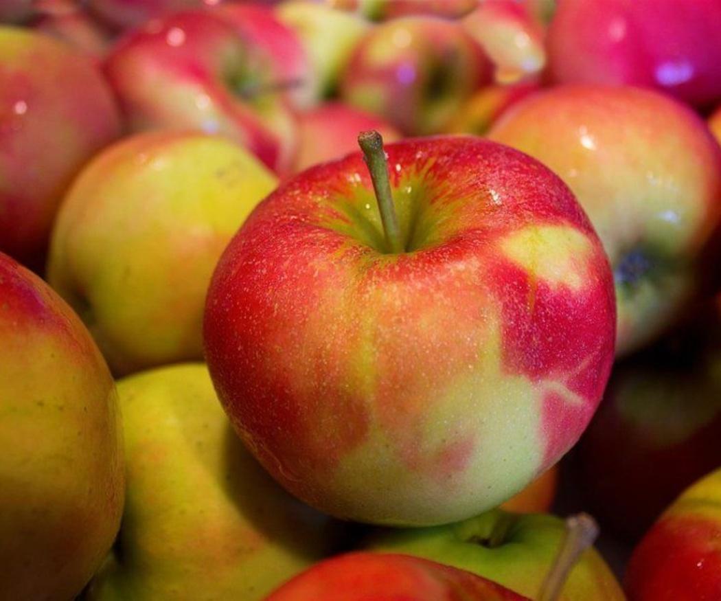 Las propiedades de la manzana