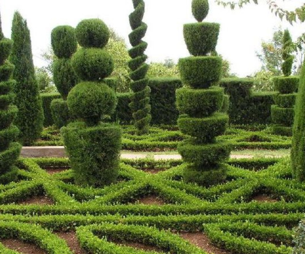 Poda artística en los árboles de tu jardín
