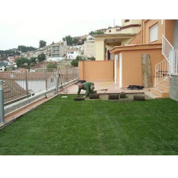 Construcción y diseño de jardines: Servicios de Jardinería Moreno
