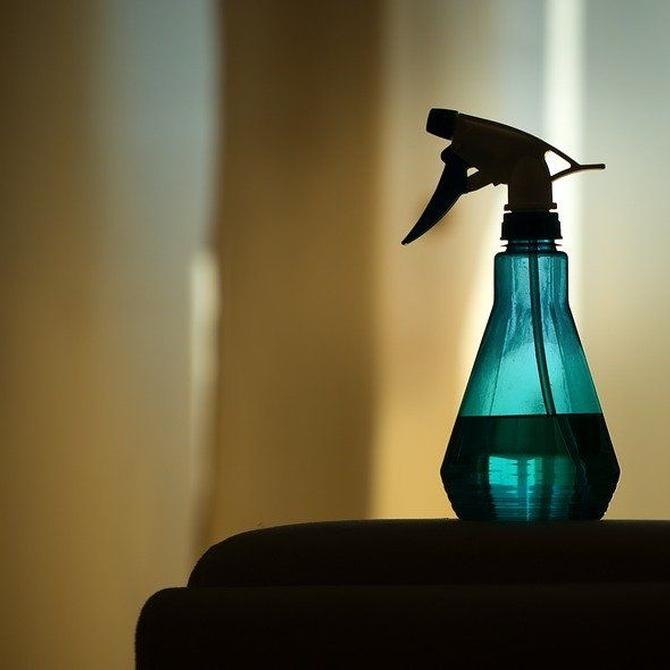 Recomendaciones para el control de plagas en el hogar