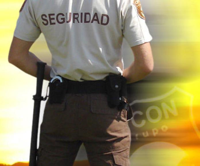 Reconocimientos y Certificados Médicos: Nuestros servicios de Centro de Conductores Plaza de san Sebastián, S.L.